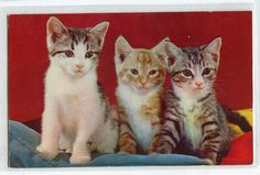 Three little kittens  Lovely vintage by sharonfostervintage, $2.00