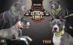 Vigo #extremedoggear