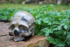 Crâne céramique émaillée oxyde de fer par DarkmasterArts sur Etsy