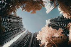 Yiu Yu Hoi's use of infrared photography for a dream-like city scene
