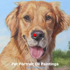 Retriever painting, dog portrait oil on canvas - Denys Sussems Gold Retriever, Golden Retriever Art, Animal Paintings, Animal Drawings, Painting Videos, Watercolor Animals, Dog Portraits, Dog Art, Canvas