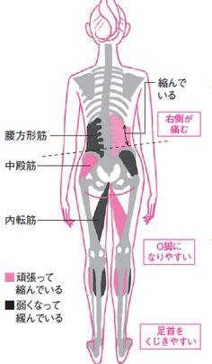 左右バランスを整えて腰痛解消 ゆがみリセット学(5)|ヘルス|NIKKEI STYLE