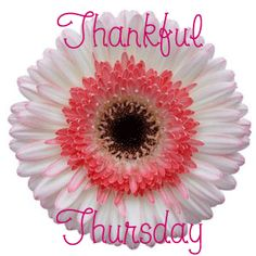 thankful thursday - Google Search