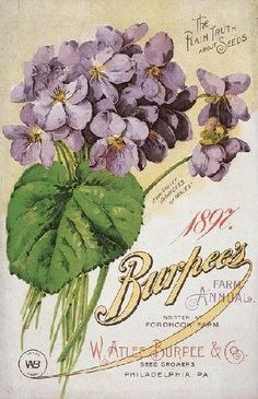 1897 Burpee's The Plain Truth About Seeds {vintage}. I love the vintage seed packets & catalogs- beautiful artwork! by jeanie Images Vintage, Look Vintage, Vintage Diy, Vintage Labels, Vintage Ephemera, Vintage Cards, Vintage Paper, Vintage Postcards, Vintage Flowers