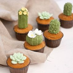 Savory magic cake with roasted peppers and tandoori - Clean Eating Snacks Cactus Cupcakes, Succulent Cupcakes, Cactus Cake, Cute Cupcakes, Garden Cupcakes, Themed Cupcakes, Wedding Cupcakes, Mini Cakes, Cupcake Cakes