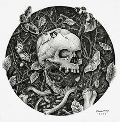 Vernal Decay by Derek-Castro (pencil on paper)