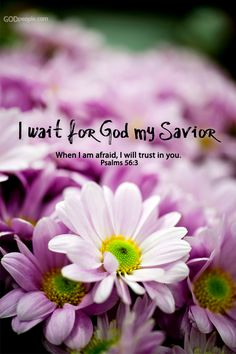 Psalm I wait for God my Savior. Scripture Quotes, Bible Scriptures, Scripture Cards, Psalm 56, Jesus Is Lord, Jesus Christ, Religious Quotes, Spiritual Quotes, Words Of Encouragement