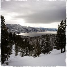 Christmas 2012 Incline Village Nevada