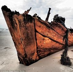 Civil War blockade runner, wreck unearthed by storm erosion. Fort Morgan, Baldwin County Alabama