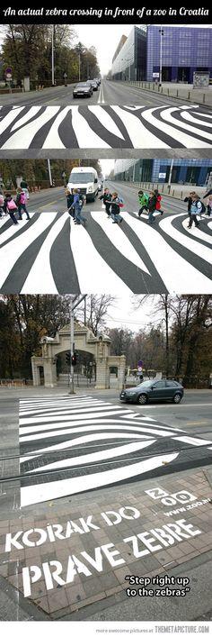 Zebra crossing…