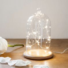 We've popped together everything you'll need to decorate with a bell jar!  | Lights4fun.co.uk Glass Domes, Glass Vase, The Bell Jar, Bell Jars, Enchanted Rose, Cosy Corner, Twinkle Lights, Christmas Deco, Led