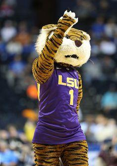 NCAA mascots in action Louisiana Swamp, New Orleans Louisiana, New Orleans Saints, Lsu Tigers Football, Football Team, Beaver Costume, College Fun, Random Items, Cheer