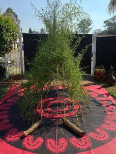 """Bamboo grows fast< let's do this! Bamboo Shelter at Puzzles Family Day Care ("""",) Childcare Rooms, Childcare Activities, Outdoor Activities For Kids, Work Activities, Outdoor Learning, Aboriginal History, Aboriginal Culture, Family Day Care, Communication Friendly Spaces"""