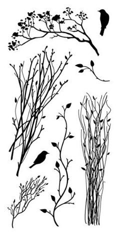 Inkadinkado Delicate Branches Clear Stamps by Inkadinkado, http://www.amazon.com/dp/B001UK7T58/ref=cm_sw_r_pi_dp_keAxrb0K6WC9V