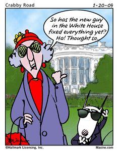 White House Guy