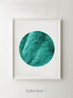 Images wall decor circle prints