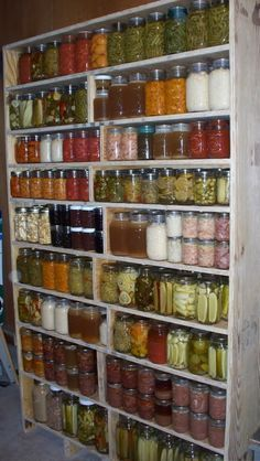 How To: Cabinet For Storing Canned Goods or Heavy Items - Survivalist Forum. Note to self:(I would add a bar across each shelf...all those beautiful jars would be ruined in an earthquake!)