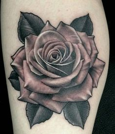 Pin by xanthippie papadopoulou on tattoo ideas Rose Drawing Tattoo, Realistic Rose Tattoo, Tattoo Sketches, Tattoo Drawings, Floral Thigh Tattoos, Rose Tattoos, Flower Tattoos, Arm Tattoo, Cover Tattoo