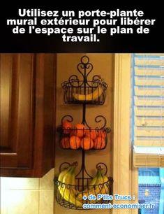 un porte-plante mural est accroché dans la cuisine pour y mettre des fruits
