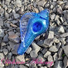 Hey, I found this really awesome Etsy listing at https://www.etsy.com/listing/259902330/metallic-blue-seashell-dichroic-glass