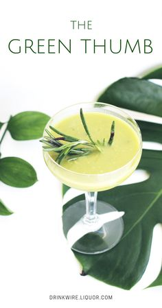 Made with many garden-friendly ingredients, the Green Thumb cocktail combines elements of creaminess, sweet, sour, herbal and savoury all into one (nutritious) cocktail. Whiskey Cocktails, Classic Cocktails, Summer Cocktails, Cocktail Drinks, Whiskey Recipes, Drink Recipes, After Dinner Drinks, Best Cocktail Recipes, Bloody Mary