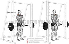 Best back exercises for lower, middle, and upper back! Overload your upper and middle trapezius using the Smith machine shrug, an isolated pulling exercise. The levator scapulae act as synergists. Pre Workout Stretches, Squat Workout, Gym Workout Tips, Weight Training Workouts, Training Tips, Training Exercises, Squat Exercise, Best Shoulder Workout, Best Chest Workout