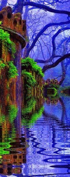 Woods In Castle Lake