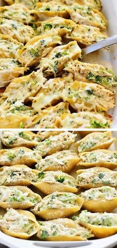 Chicken and Broccoli Alfredo Stuffed Shells
