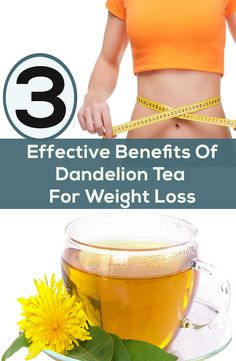 Are you planning to lose your weight in an effective manner? Then here's a list of 3 effective benefits of dandelion tea for weight loss for you to try out.