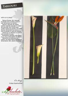 Tablouri Flori