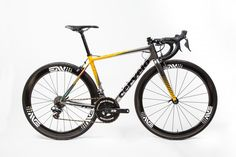Want own one of the 2015 MTN-Qhubeka team bikes including the iconic bikes ridden by the team during the Tour de France? Road Bikes, Road Cycling, Fashion Books, Cool Photos, Tours, Gallery, Google Search, Nice, Photography