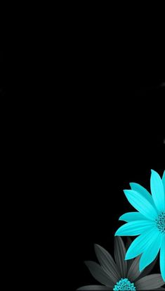 Black and blue flowers wallpaper