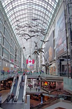 "Toronto, Canada - Eaton Center. With more than 50 million visitors each year, Toronto's downtown mall is one of the the city's top tourist destinations. Here we see a ""flock of birds"" perpetually gliding overhead."