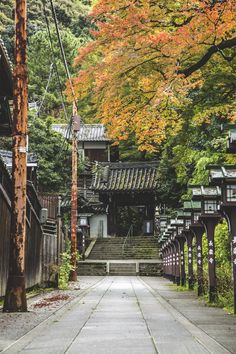 "alexwilliammilsom: "" Chorakuji Temple - Kyoto, Japan Alex William Milsom 