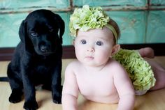 adorable but doubtful it's easy to find a family with a newborn AND puppy lol