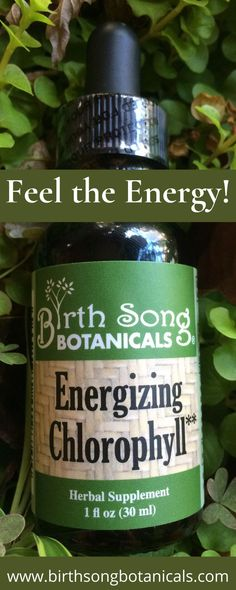 """""""I can't recommend this product enough! I add the drops in my water and it tastes fresh and makes you feel naturally energized! Much more convenient and tasty than the other brands I've tried. Plus, you really feel the difference AAA for Birth Song Botanicals Energizing Chlorophyll Drops!!"""" #chlorophyll #detox #energy Breastfeeding Art, Birth Art, Altitude Sickness, Birth Doula, Natural Birth, Menstrual Cycle, Natural Deodorant, Energy Level, Menopause"""