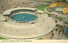 Aquatarium (gone) ~ St Petersburg ~ Florida