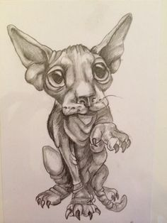 Pencil sketch of sphynx hairless cat in frameless clip frame ☆ Cat art sphinx