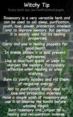 Witchy Tip rosemary