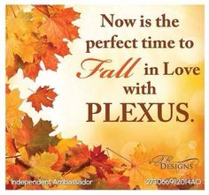 I love fall!  And I love what Plexus has done for me!  So thankful that I feel better everyday and make a whole other extra income!  Would love to share it with you too!  www.plexusslim.com/robinmccartney
