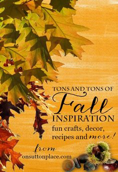 Fall Through the Years   One DIY blogger's collection of Fall inspiration. 3 years of decor ideas with lots of photos, fun crafts and yummy recipes all in one place! Easy links to find exactly what you are looking for.