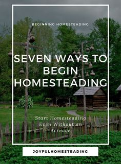 Beginning homesteading might be your dream and the reason you are reading this site.