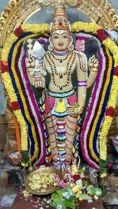 Lord Murugan, Goddess Lakshmi, Hindu Deities, God Pictures, Hindu Art, Hindus, Indian Gods, God Of War, Lord Shiva