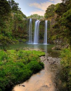 Whangarei Falls Amazing waterfalls near Whangarei. Loop walk which takes 1hr 30mins. Car park and picnic site. Location: Boundary Road, Tikipunga, Whangarei, Northland New Zealand