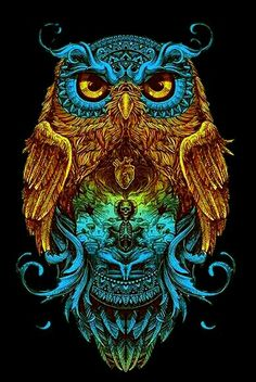 10 Amazing Owl Artwork Creativity Next Level Buho Tattoo, Owl Artwork, Owl Wallpaper, Owl Tattoo Design, Owl Pictures, Beautiful Owl, Art Graphique, Psychedelic Art, Skull Art
