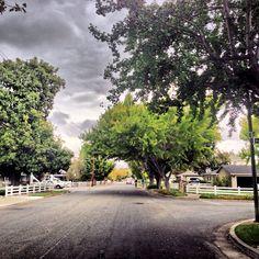 Walking around my neighborhood on a strangely beautiful day!