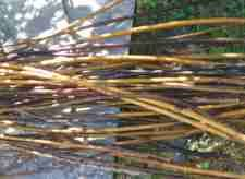 find out about Twigs for Crafts here...