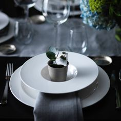 Personal spots are an easy way to make each guest feel special. We've matched a name card with a micro sized plant display in the the middle of the setting