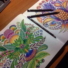 Tropicalwonderland | Search Instagram | Pinsta.me - Instagram Online Viewer
