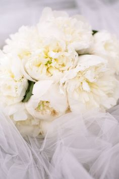White peonies. Photo: Pam Cooley